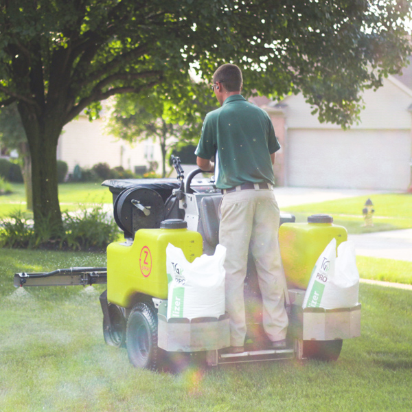 toledo lawn care services roll over into next year